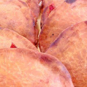 z-empanadilla-normal-sin-gluten-sin-lactosa